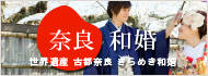 奈良での結婚式は「奈良和婚」